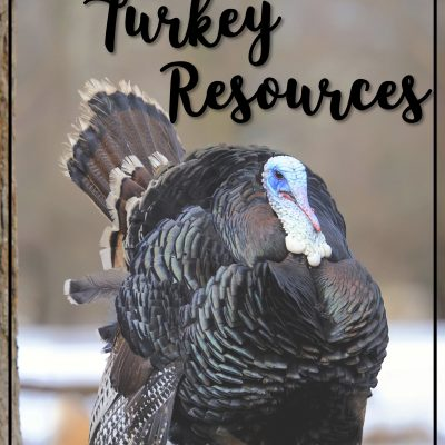 A Rafter of Timely and Terrific Turkey Resources