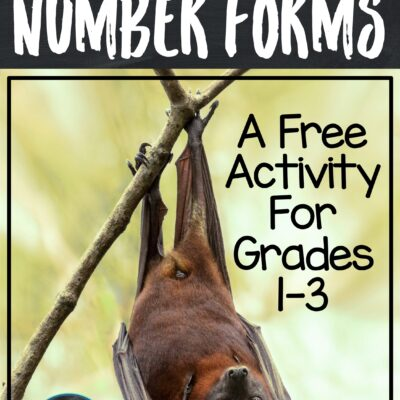 Are You Absolutely Batty About Number Forms?