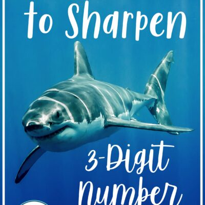 How to Easily Sharpen Skills for 3 Digit Numbers
